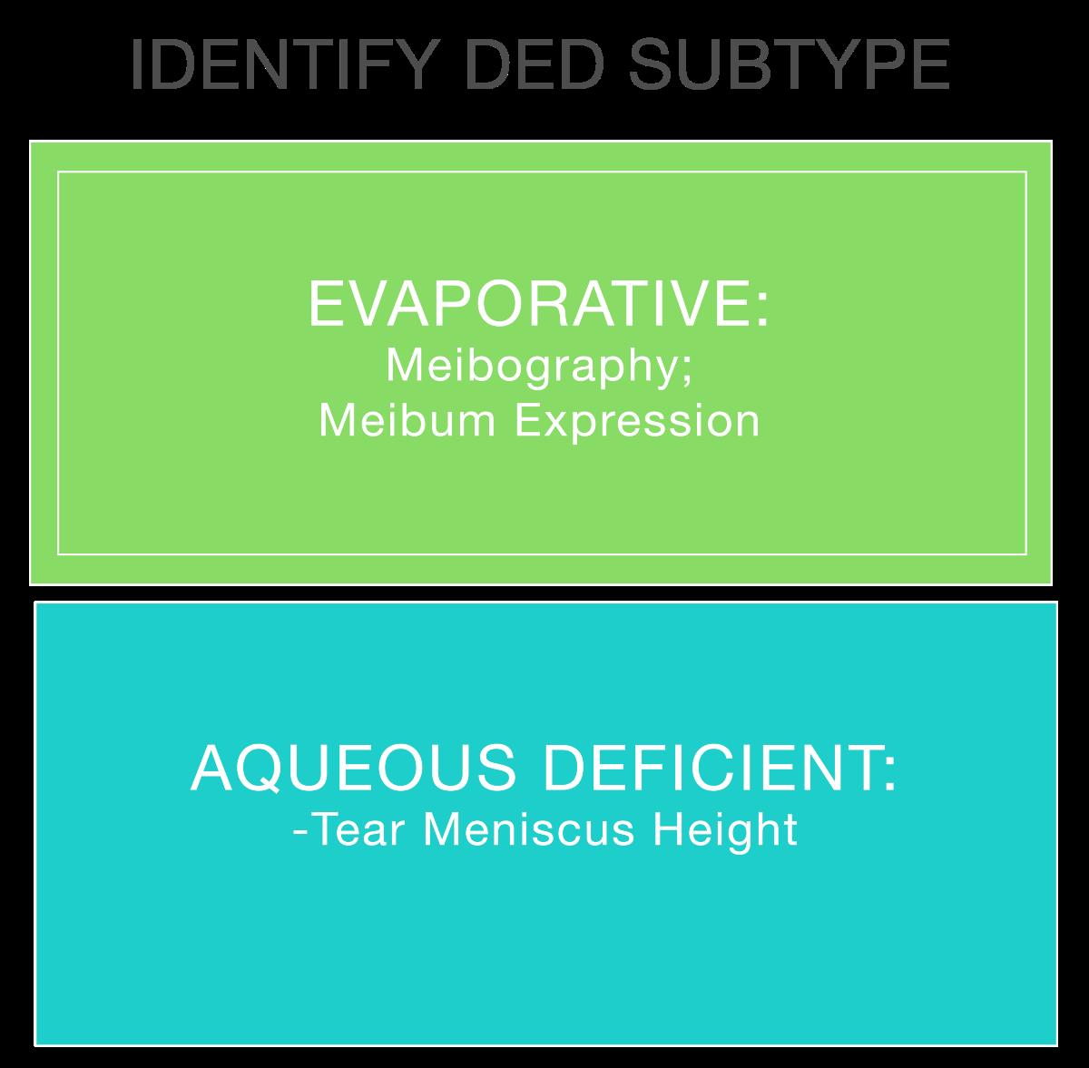 Meibography